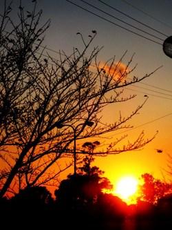 高丘公園での夕日