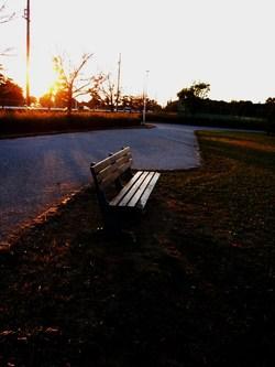 高丘公園のベンチ